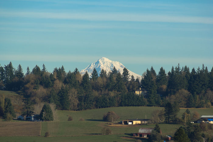 Mt Hood View from Deck