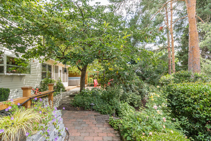 Beautifully Landscaped, Bird-Friendly Backyard