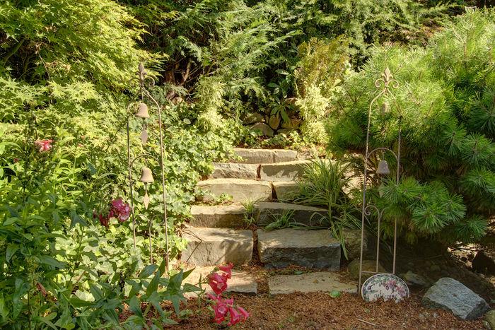 Backyard landscaping detail