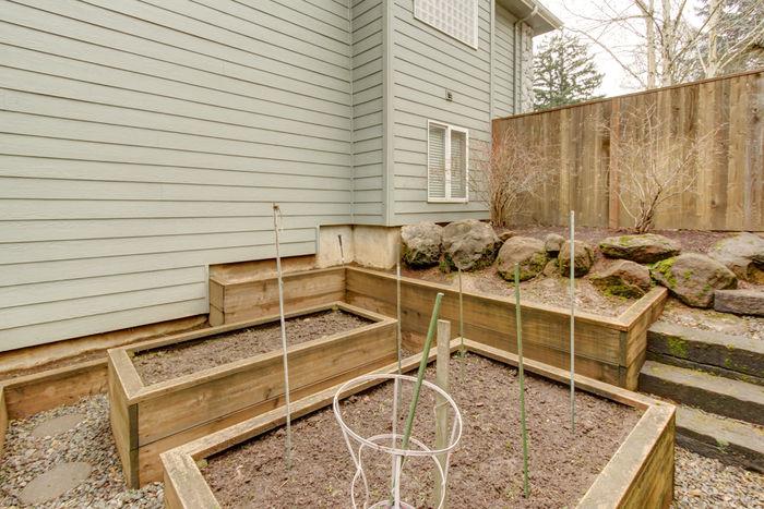 Garden in backyard